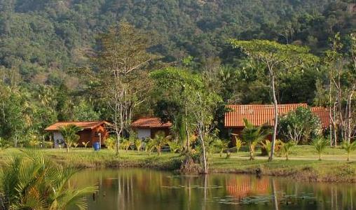 Een visum aanvragen voor uw reis naar Suriname (e-visum)