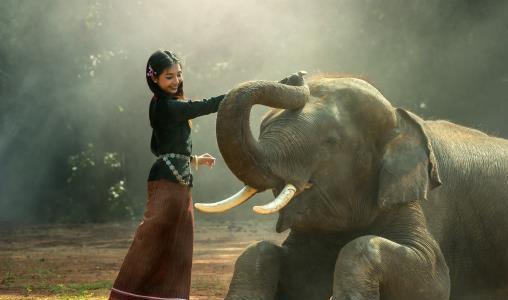 Een visum aanvragen voor uw reis naar Cambodja (e-visum)