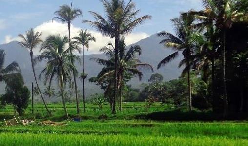 Een visum aanvragen voor uw reis naar Indonesië