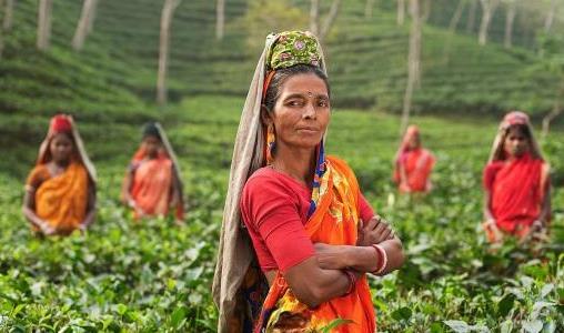 Een visum aanvragen voor uw reis naar India (e-visum)