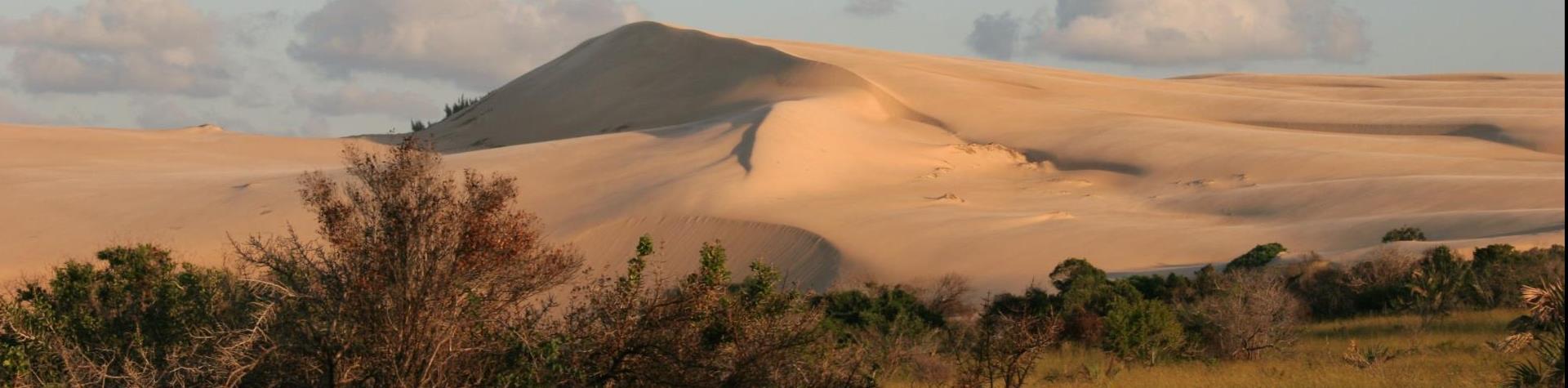 YourVisa | Visum aanvragen Mozambique