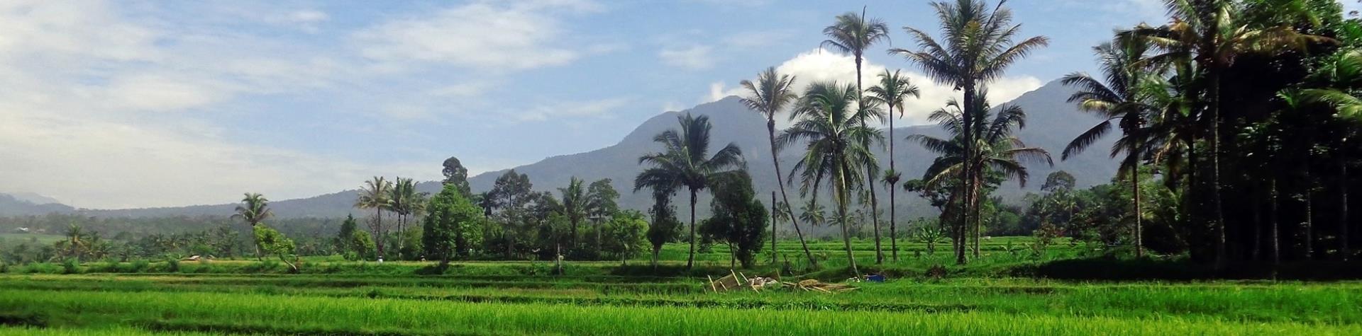 YourVisa | Visum aanvragen Indonesië